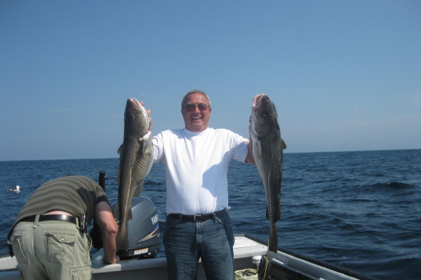 don and cod